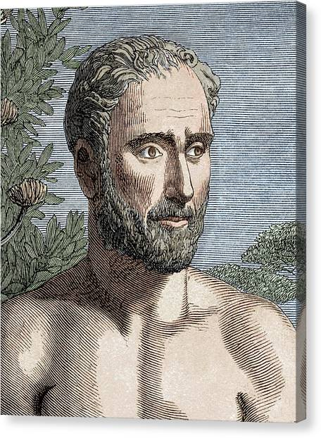 Irrational Canvas Print - Pythagoras Of Samos by Sheila Terry