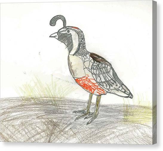 Quail Bird Canvas Print by Ethan Chaupiz