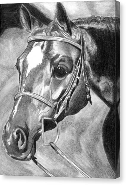 Quarter Horse Hunter Canvas Print by Olde Time  Mercantile