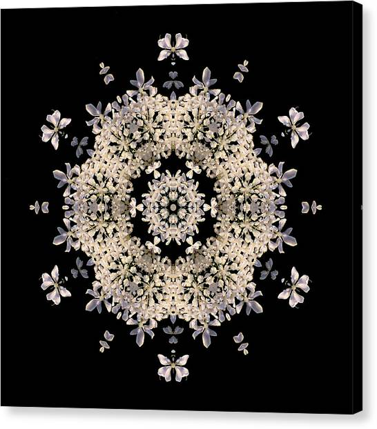 Queen Anne's Lace Flower Mandala Canvas Print