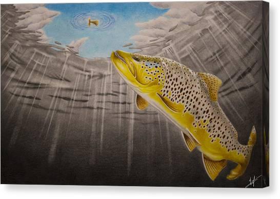 Trout Canvas Print - Quiet Anticipation by Nick Laferriere