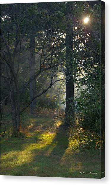 Quiet Morning Canvas Print