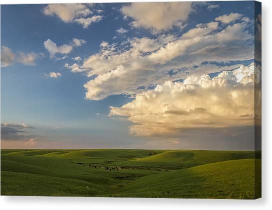 Quiet On The Prairie Canvas Print