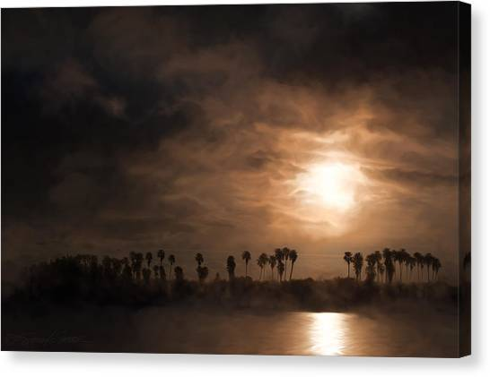 Quiet Sunrise With Fog And Palm Trees Canvas Print