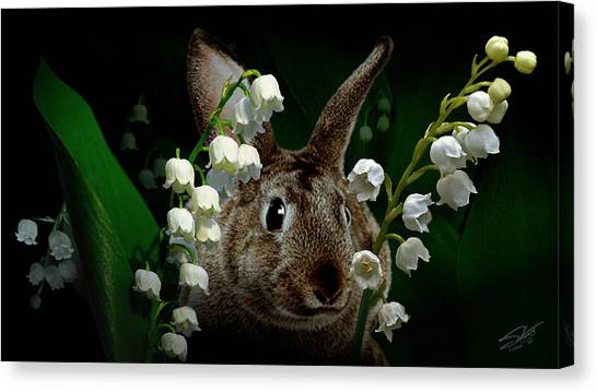 Rabbit In The Lilies Canvas Print