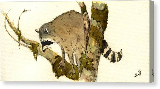 Raccoons Canvas Print - Raccoon On A Tree by Juan  Bosco
