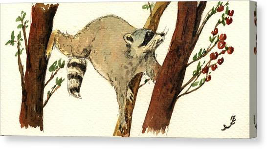 Raccoons Canvas Print - Raccoon On Tree by Juan  Bosco