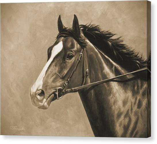 Bay Horse Canvas Print - Racehorse Painting In Sepia by Crista Forest