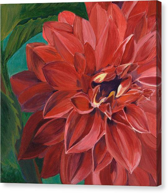 Rachael's Dahlia Canvas Print