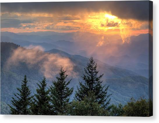 Radiance Canvas Print by Doug McPherson
