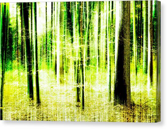 Radiation Forest Canvas Print
