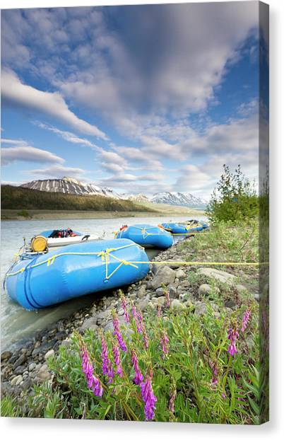Glacier Bay Canvas Print - Rafts And Wildflowers Along The Alsek by Josh Miller Photography
