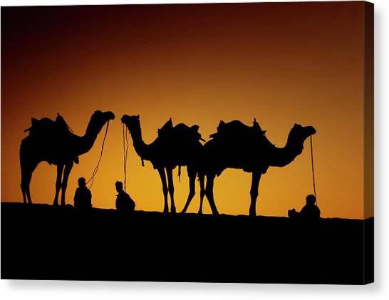 Thar Desert Canvas Print - Ragasthan, India, Indian Sub-continent by Piper Mackay