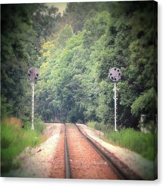 Light Rail Canvas Print - #railroad #traintracks #rails #signals by Kim Schumacher