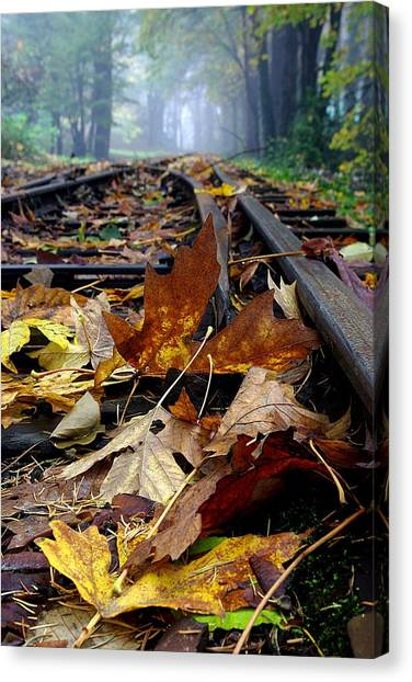 Rails And Leaves Canvas Print