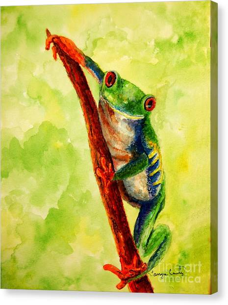 Rain Forest Frog Canvas Print