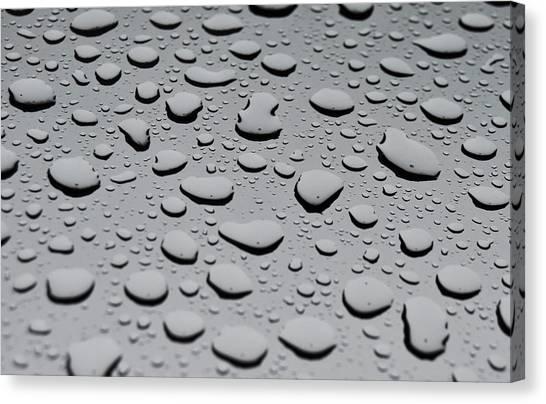 Rain On Sunroof Canvas Print