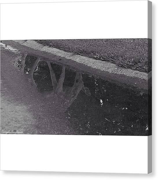 Manitoba Canvas Print - Rain Puddle Reflections #bwstyles_gf by Ren Brooks