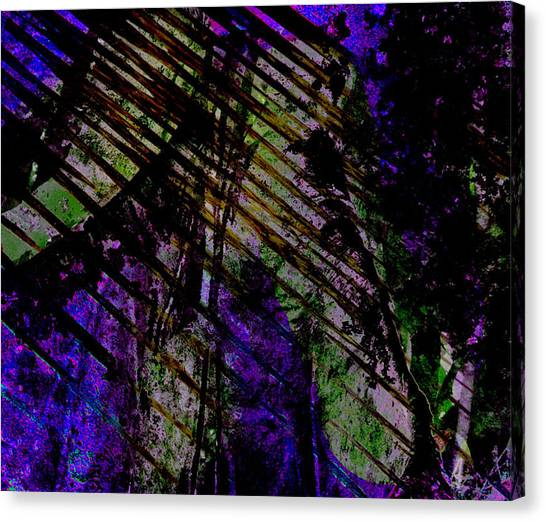 Rain Shadow Canvas Print