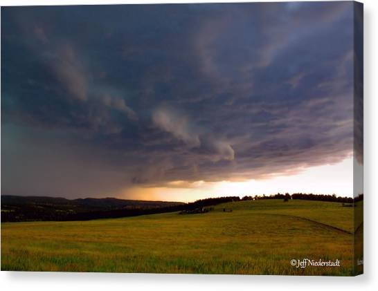 Rain Shelf Canvas Print