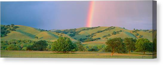 Contour Canvas Print - Rainbow And Rolling Hills In Central by Panoramic Images