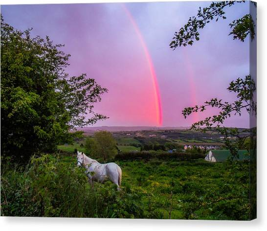 Rainbow At Sunset In County Clare Canvas Print