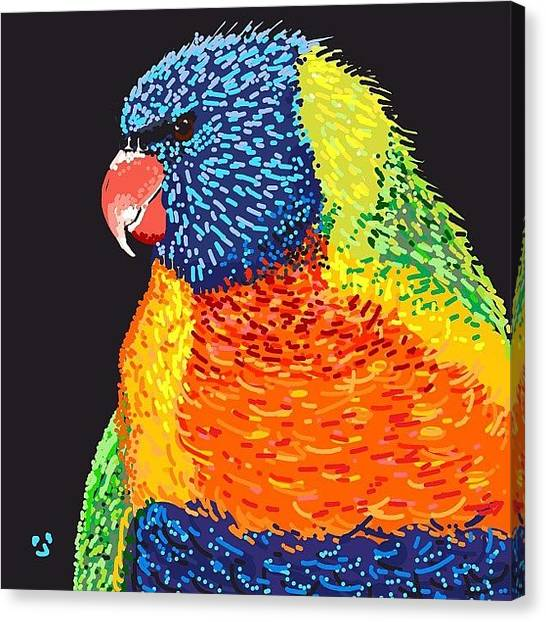 Tropical Birds Canvas Print - Rainbow Lorikeet For #parrot #lorikeet by David Burles