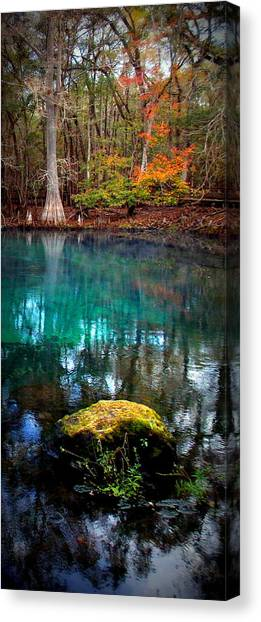 Rainbow Of Colors Manatee Springs1 Canvas Print