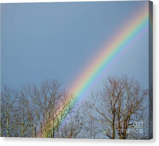 Canvas Print featuring the photograph Rainbow Through The Tree Tops by Kristen Fox