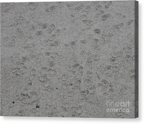 Raindrops In Sand Canvas Print by Gayle Melges