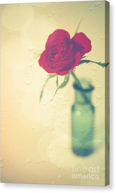 Red Roses Canvas Print - Raindrops On Roses . . . by Jan Bickerton