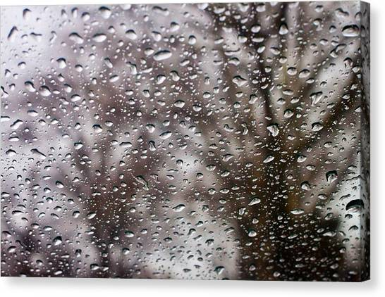 Raindrops Canvas Print by Richie Stewart