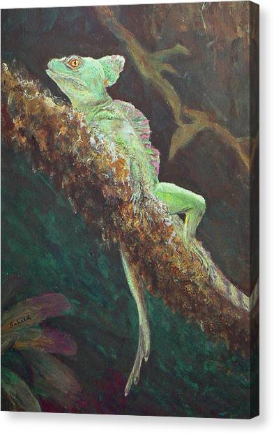 Rainforest Basilisk Canvas Print