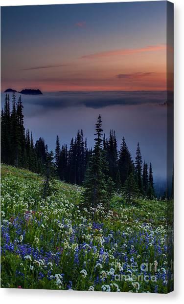 Washington Nationals Canvas Print - Rainier Skyline Trail Sunset by Mike Reid
