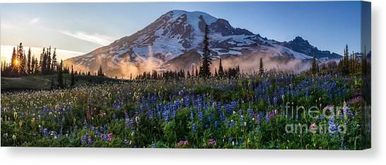 Mount Rainier Canvas Print - Rainier Wildflower Meadows Pano by Mike Reid