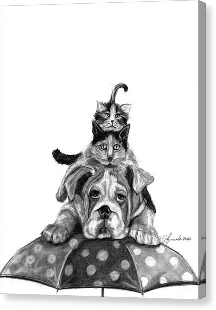 Raining Cats And A Dog Canvas Print
