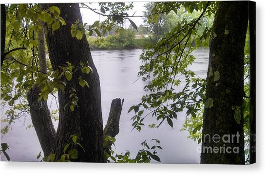 Rainy Day At The River Canvas Print by Lisa Gifford