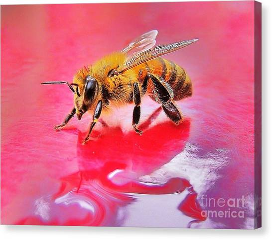 Rainy Day Bee Canvas Print