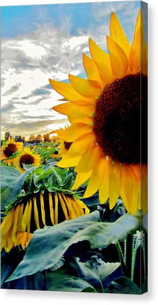 Raisingluminescence Raising Above The Crowd  Canvas Print