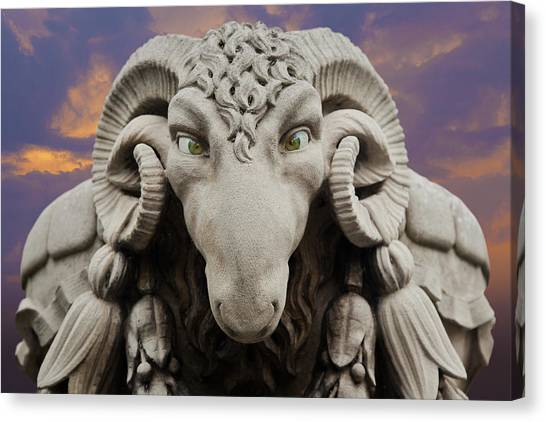 Ram-a-sees Canvas Print