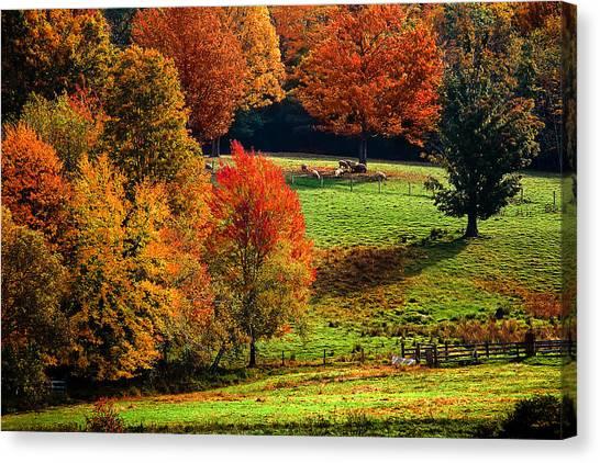 Ramblin' Fall Canvas Print