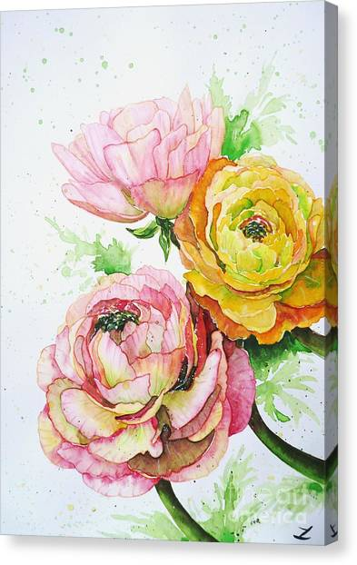 Ranunculus Flowers Canvas Print
