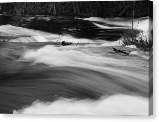 Raquette River #2 Canvas Print