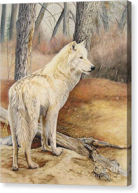 Rare Find Canvas Print