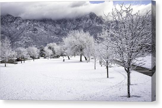 Rare Snowfall Canvas Print