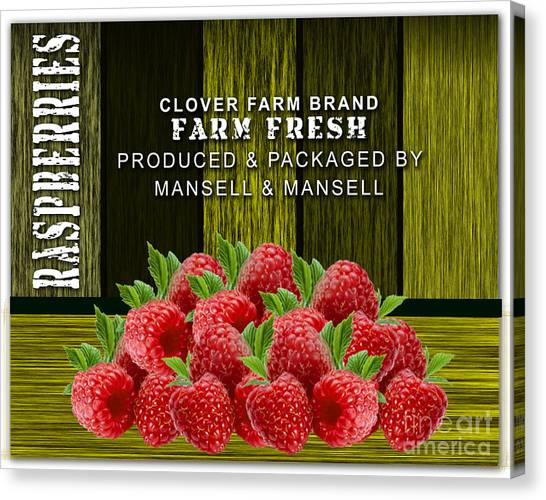 Raspberry Canvas Print - Raspberry Fields by Marvin Blaine