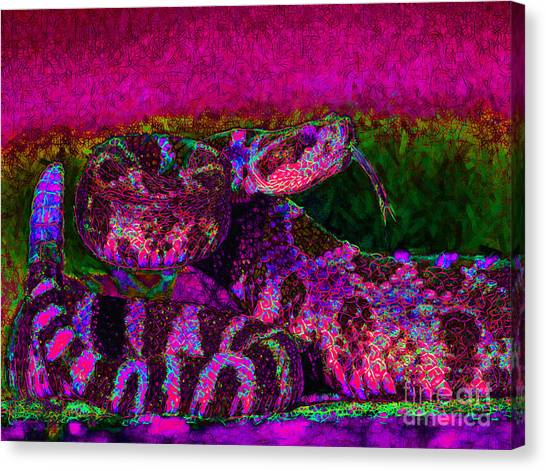 Poisonous Snakes Canvas Print - Rattlesnake 20130204m80 by Wingsdomain Art and Photography