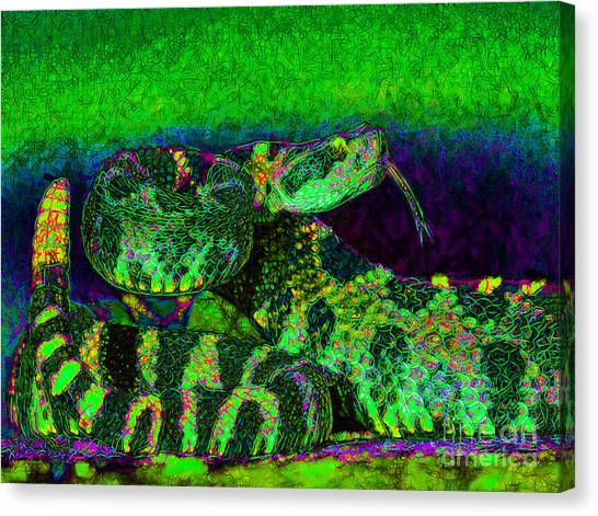 Poisonous Snakes Canvas Print - Rattlesnake 20130204p75 by Wingsdomain Art and Photography