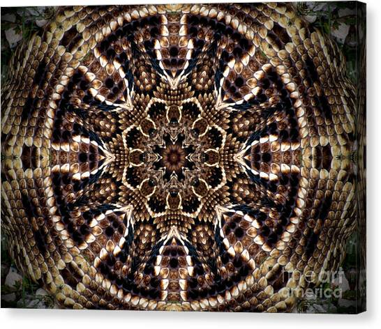 Rattlesnake Circle Canvas Print