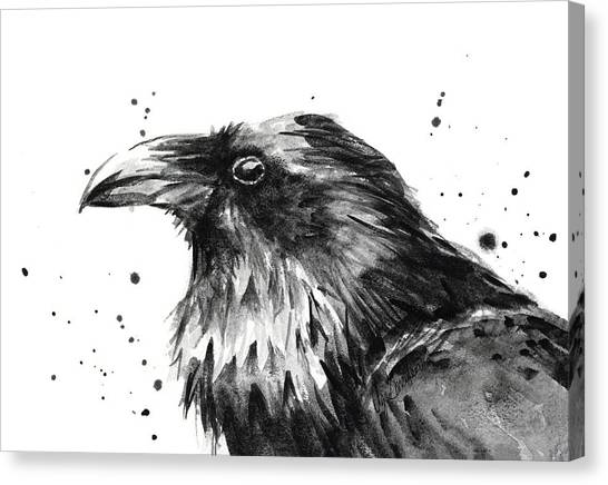 Ravens Canvas Print - Raven Watercolor Portrait by Olga Shvartsur